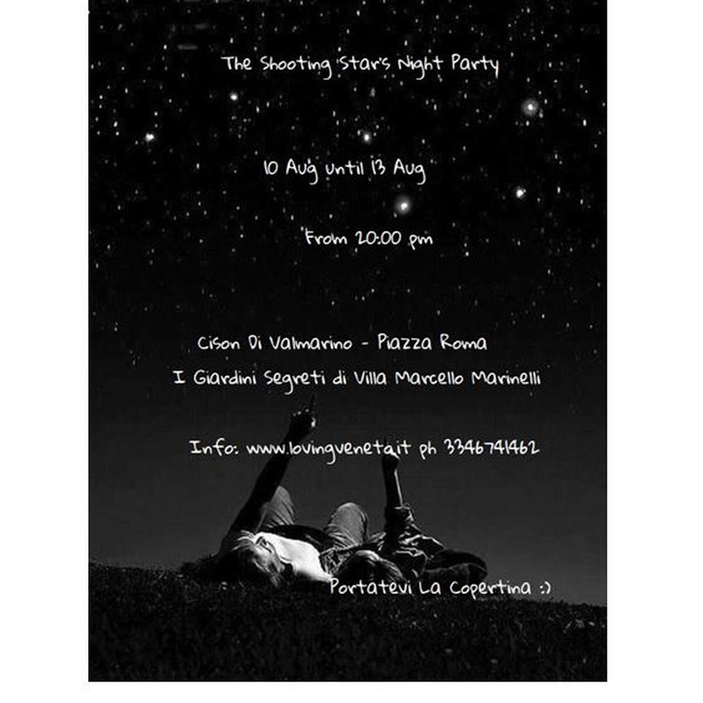 The Shooting Star's Night Party